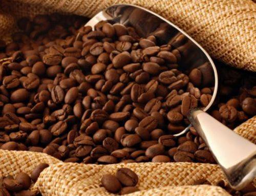 Gorka ili slatka… kafa uvek prija!